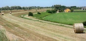 generica agricoltura