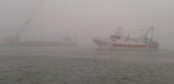 sopralluogo ai lavori alla bocca del porto di Pila (1)